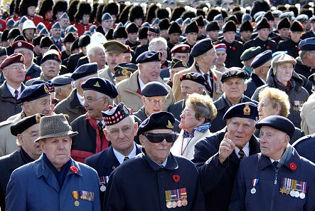 Veterans take part in the parade during the National Remembrance Day Ceremony at the National War Memorial in Ottawa, on November 11, 2005.