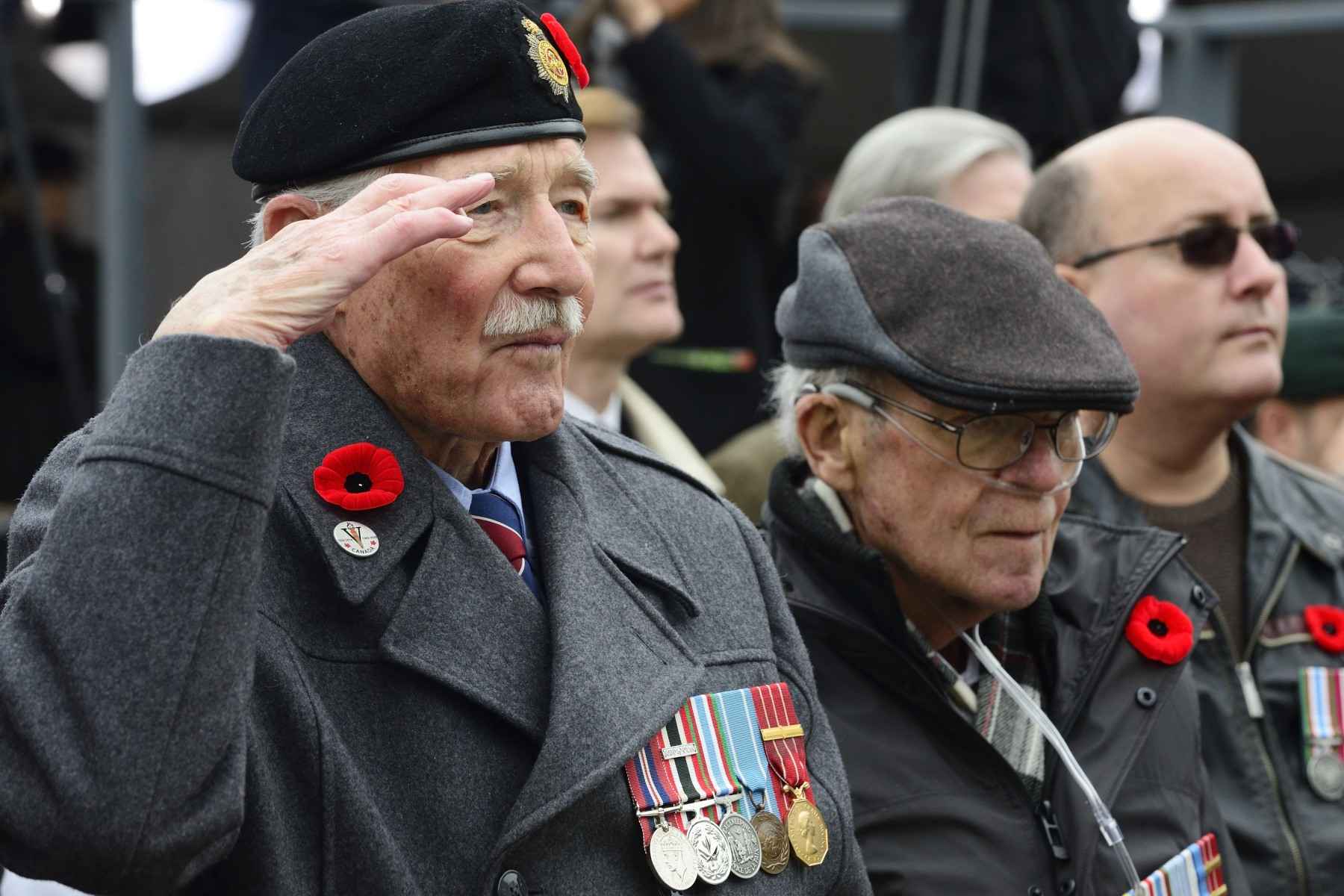 On this day of morning, veterans stood up proudly at the foot of the National War Memorial.