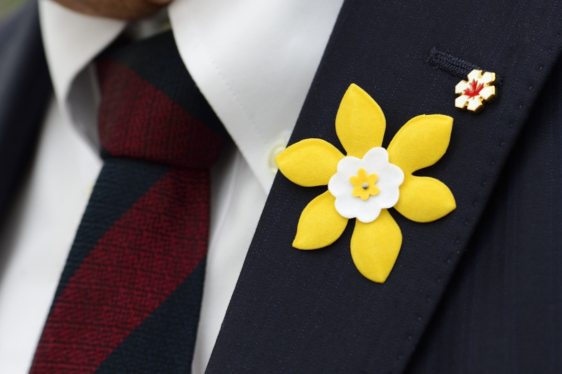 During Daffodil Month, held every April, Canadians are encouraged to join the fight against cancer. Across the country, Canadian Cancer Society volunteers will be selling bright yellow daffodil pins, as well as fresh daffodils, which symbolize strength and courage in the fight against cancer. By wearing the pin throughout the month of April, Canadians can show their support for people living with cancer.