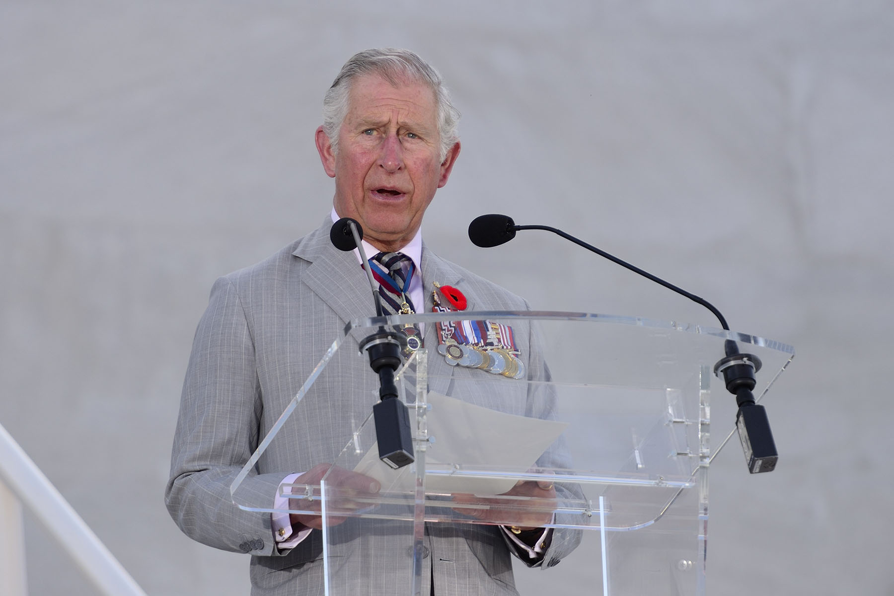 His Royal Highness the Prince of Wales spoke on behalf of Her Majesty The Queen.