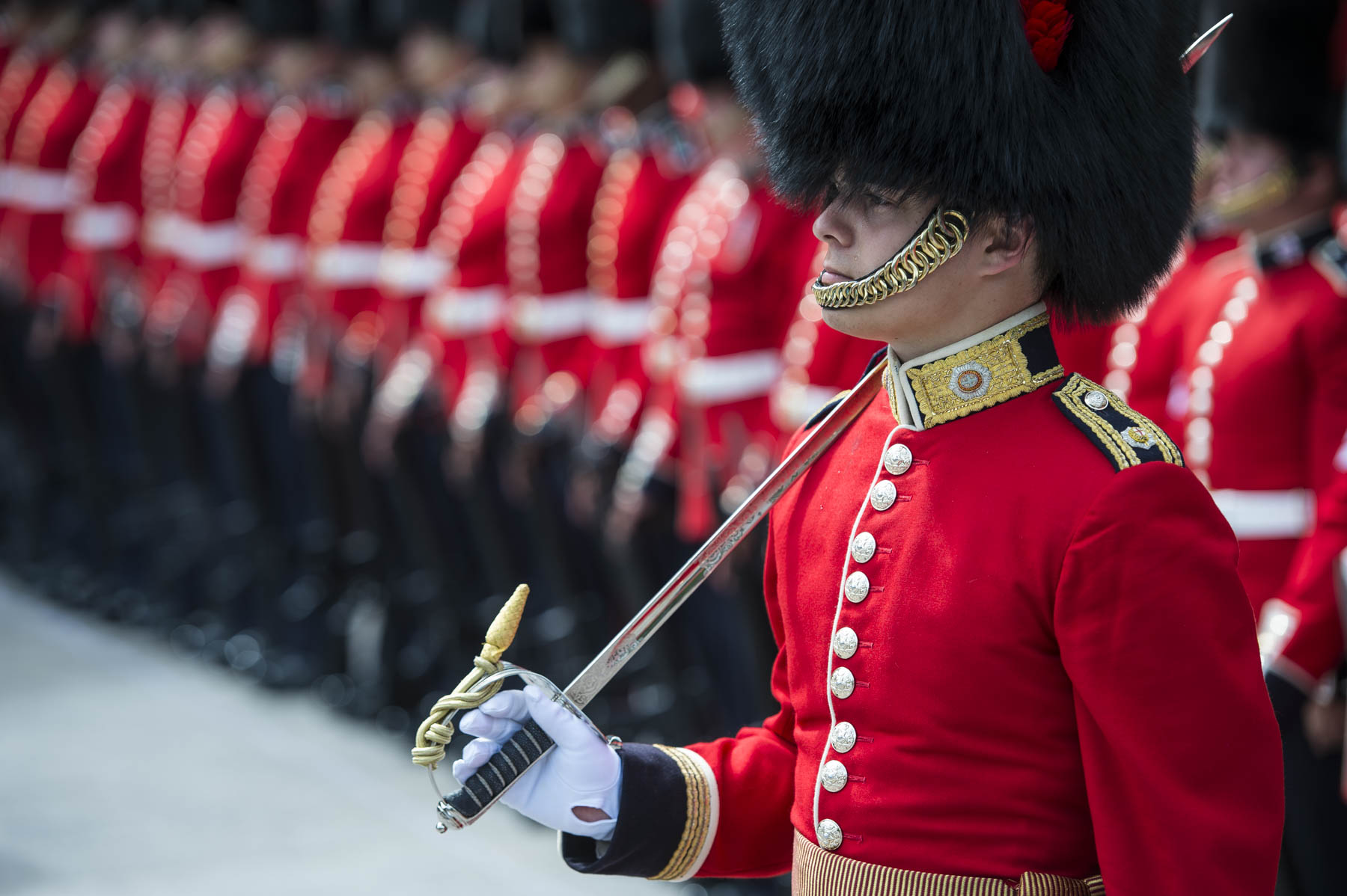 The Ceremonial Guard includes members of regiments from across the country.