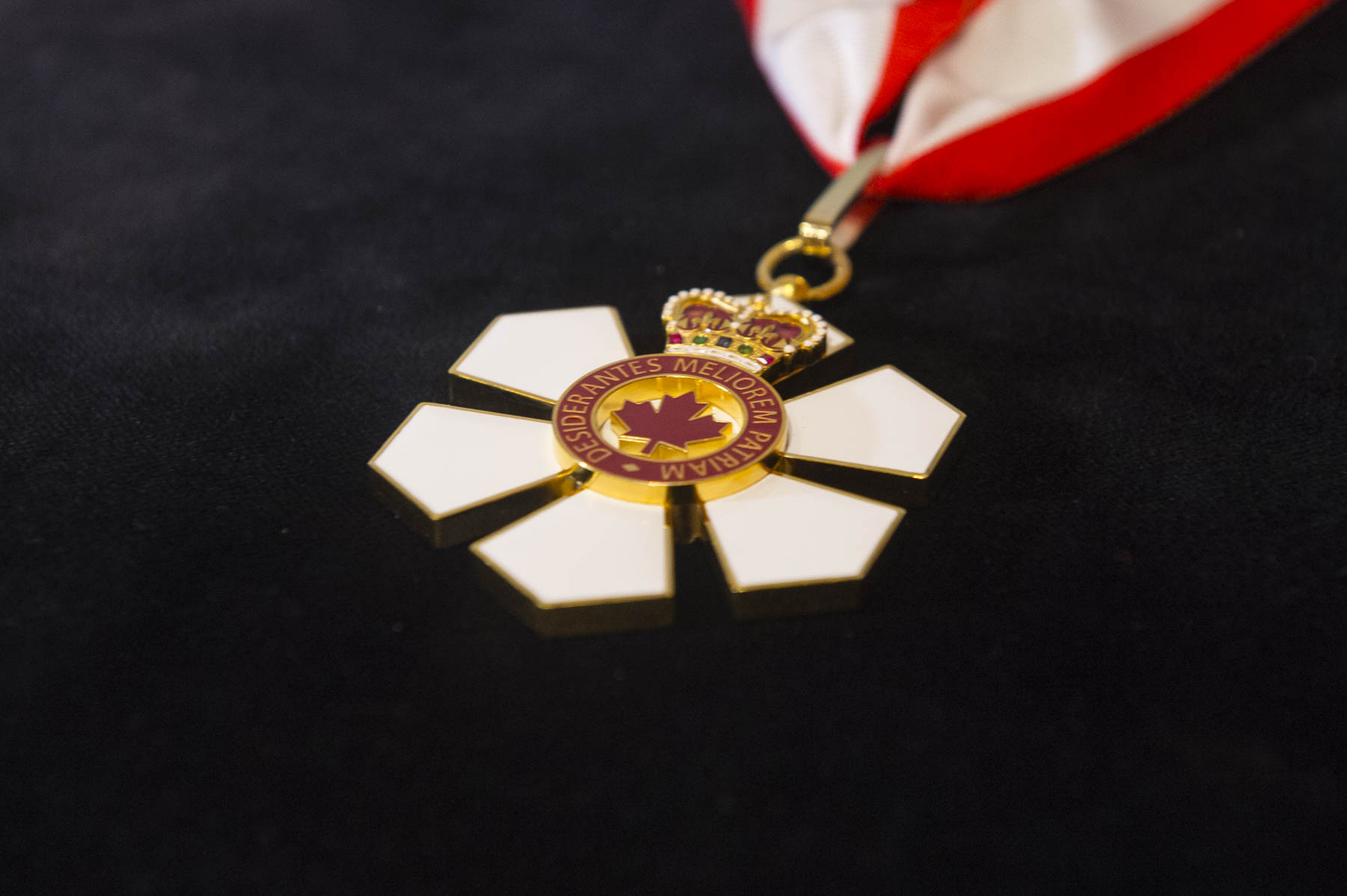 Created in 1967, on the occasion of Canada's centennial year, the Order of Canada, one of our country's highest civilian honours, recognizes outstanding achievement, dedication to the community and service to the nation.