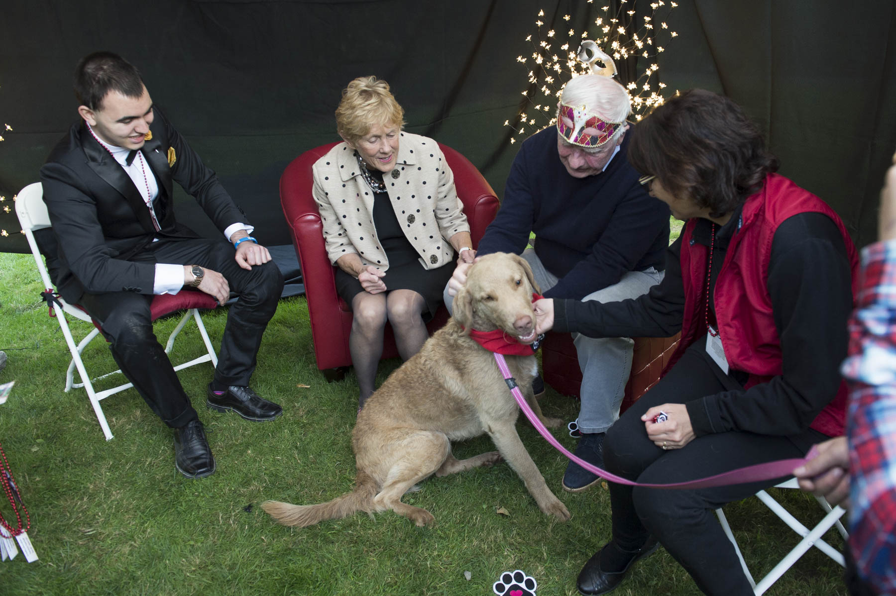 The zone featured mental health organizations providing a wide breadth of information from how to support and care for loved ones, to empowering young people to promote their own well-being as well as others. Ottawa Therapy Dogs participated in the event.
