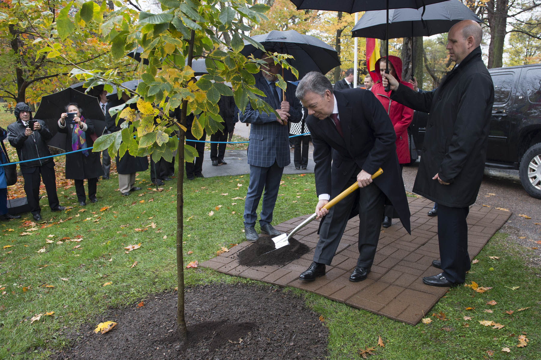 The President planted a bitternut hickory tree (Carya cordiformis) on the grounds of Rideau Hall to commemorate his State visit to Canada. The wood of the bitternut hickory is known for its durability and strength, which reflect our countries' important relationship.