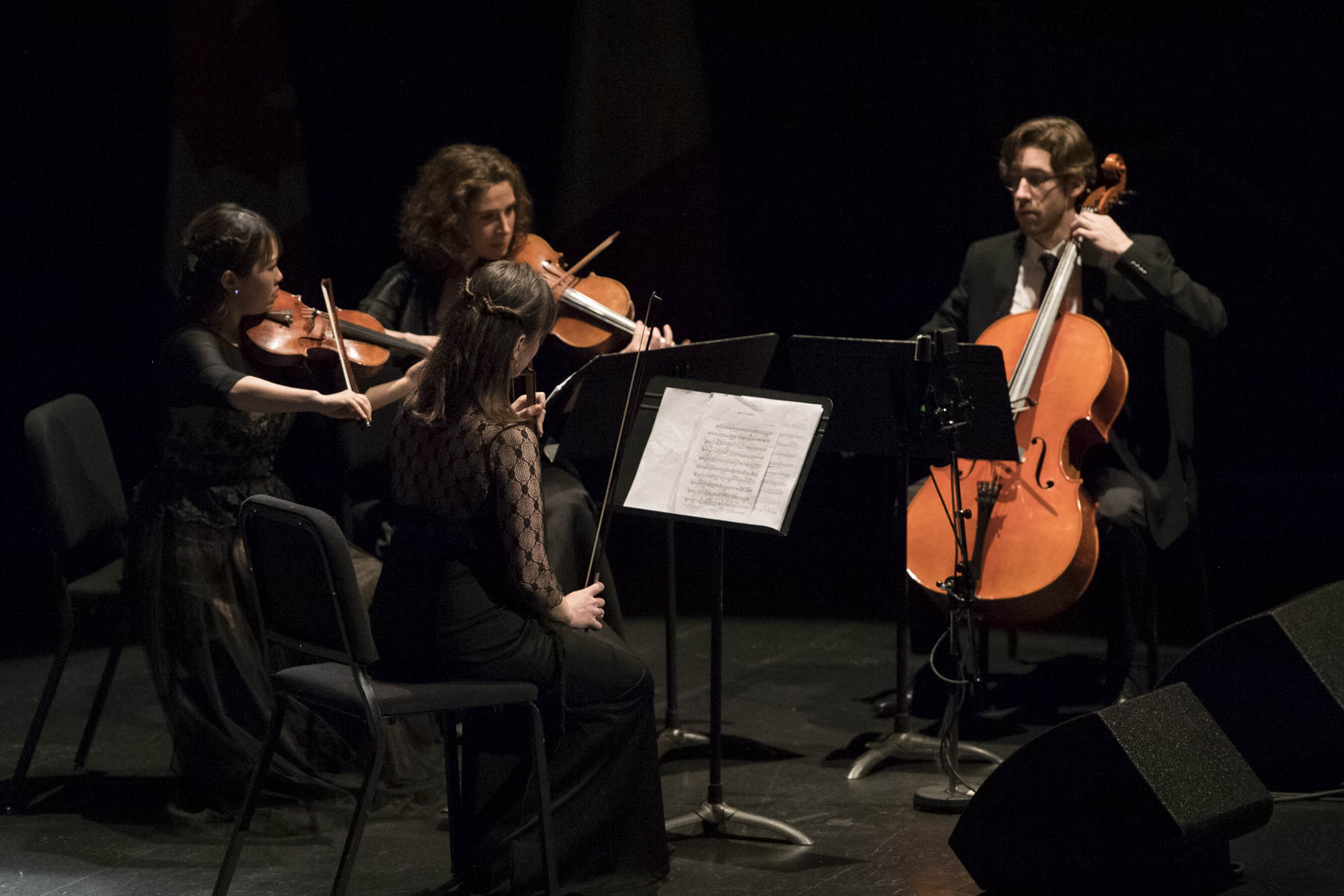 A variety of musicians performed during the concert, including a string ensemble.