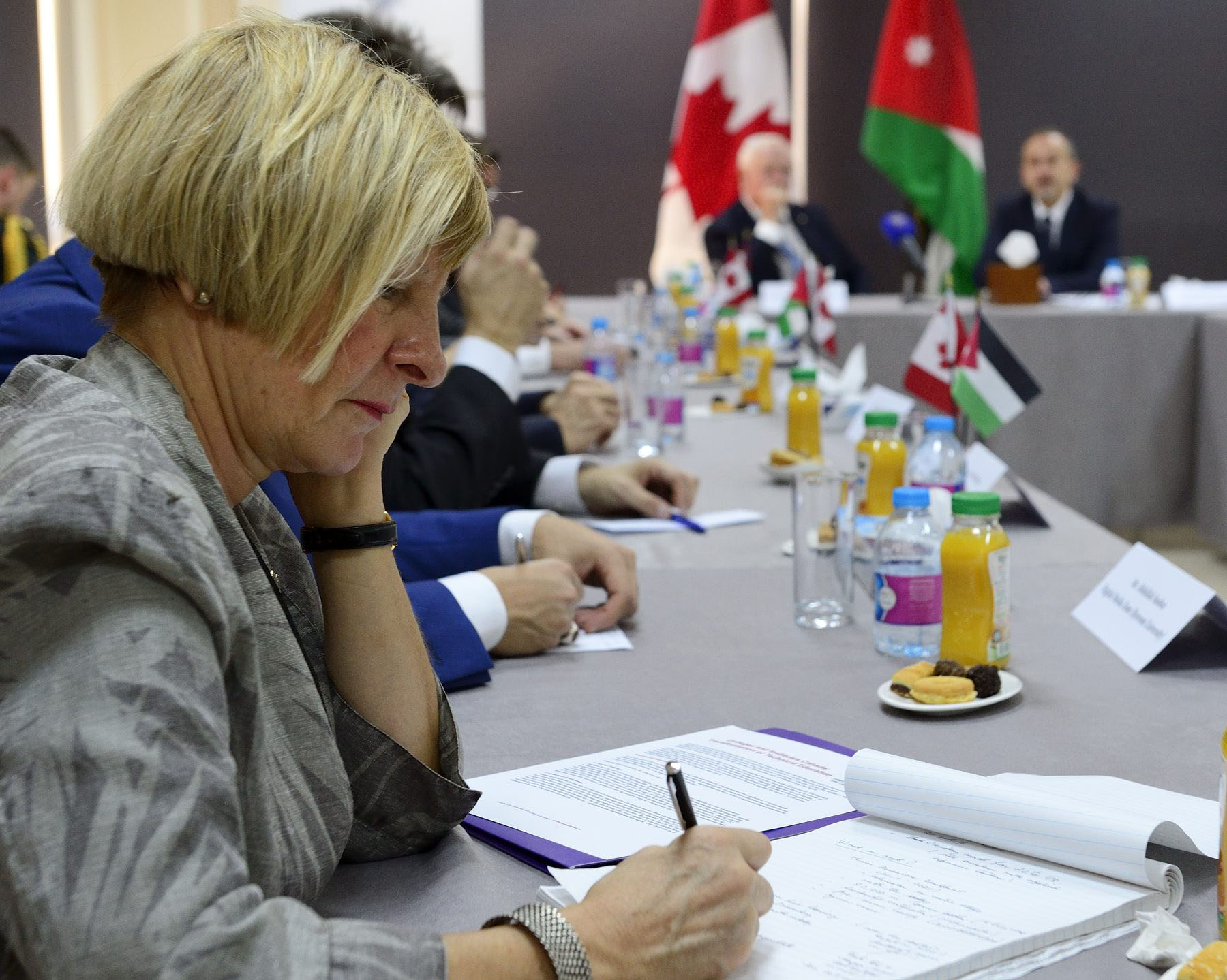 Canadian delegate Denise Amyot, President and Chief Executive Officer of Colleges and Institutes Canada attended the meeting.