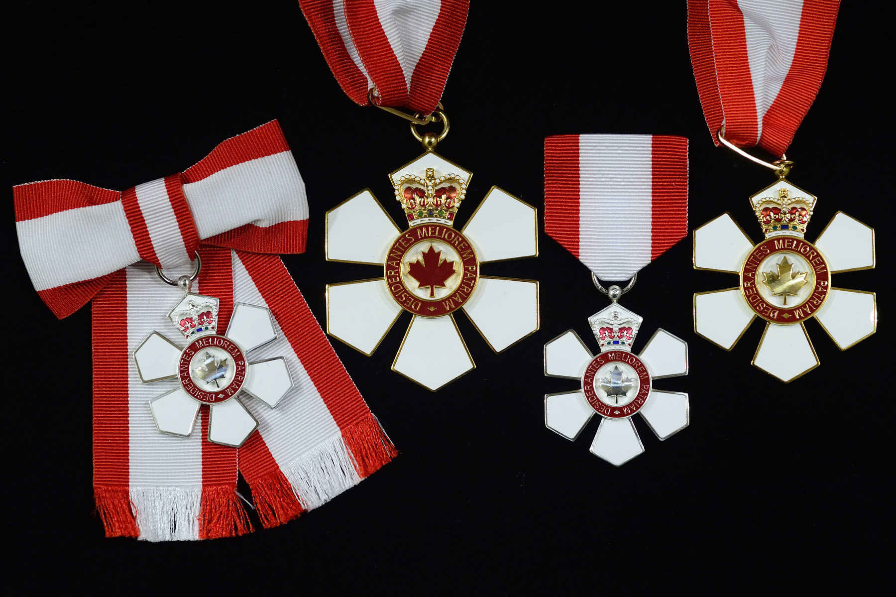 On November 17, 2016, the Governor General invested 42 recipients in the Order of Canada, one of our country's highest honour, during an investiture ceremony at Rideau Hall.