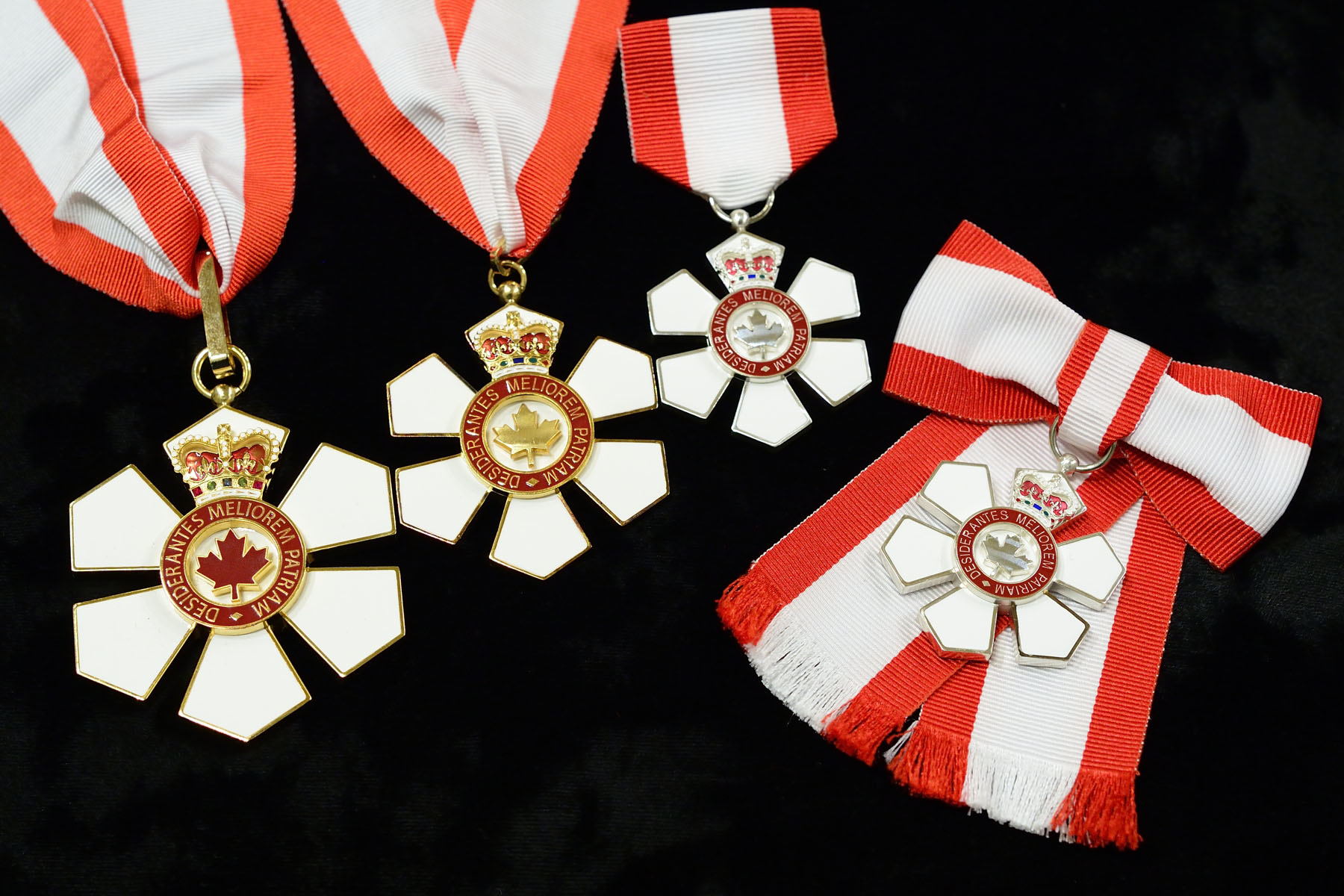 On February 17, 2017, Governor General David Johnston invested 42 recipients into the Order of Canada, one of our country's highest honour, during the year's first investiture ceremony at Rideau Hall.