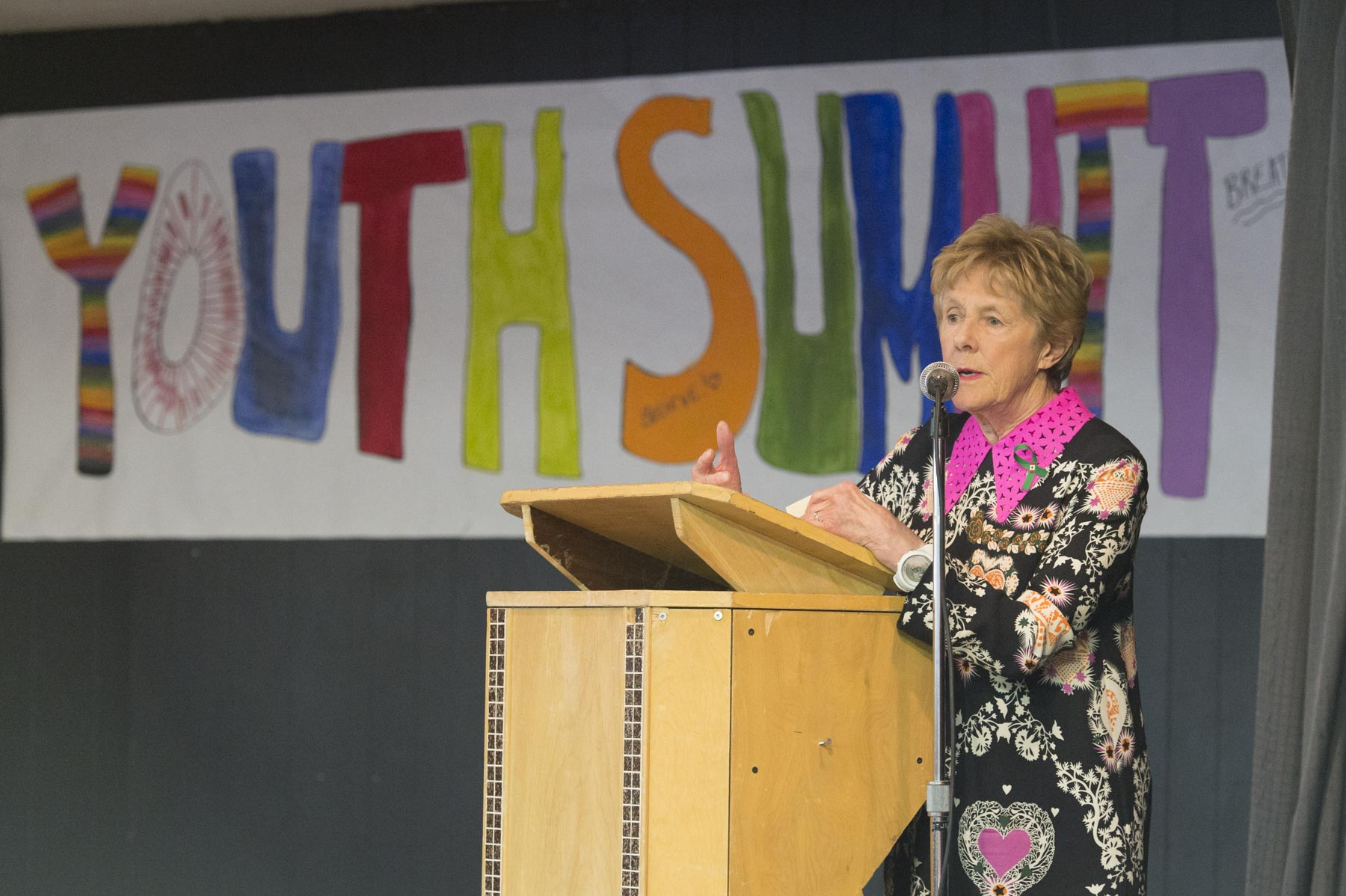 Their Excellencies the Right Honourable David Johnston, Governor General of Canada, and Mrs. Sharon Johnston participated in the Youth Summit on Mental Health Wellness at St. Michael's High School in Low, Quebec, during which Her Excellency will deliver remarks.