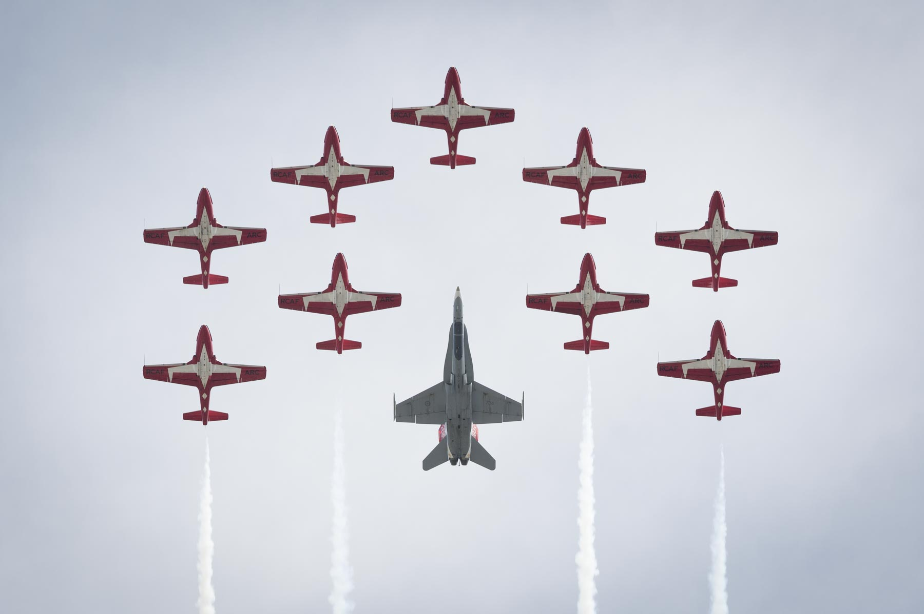 The Canadian Forces Snowbirds also participated in the flypast.