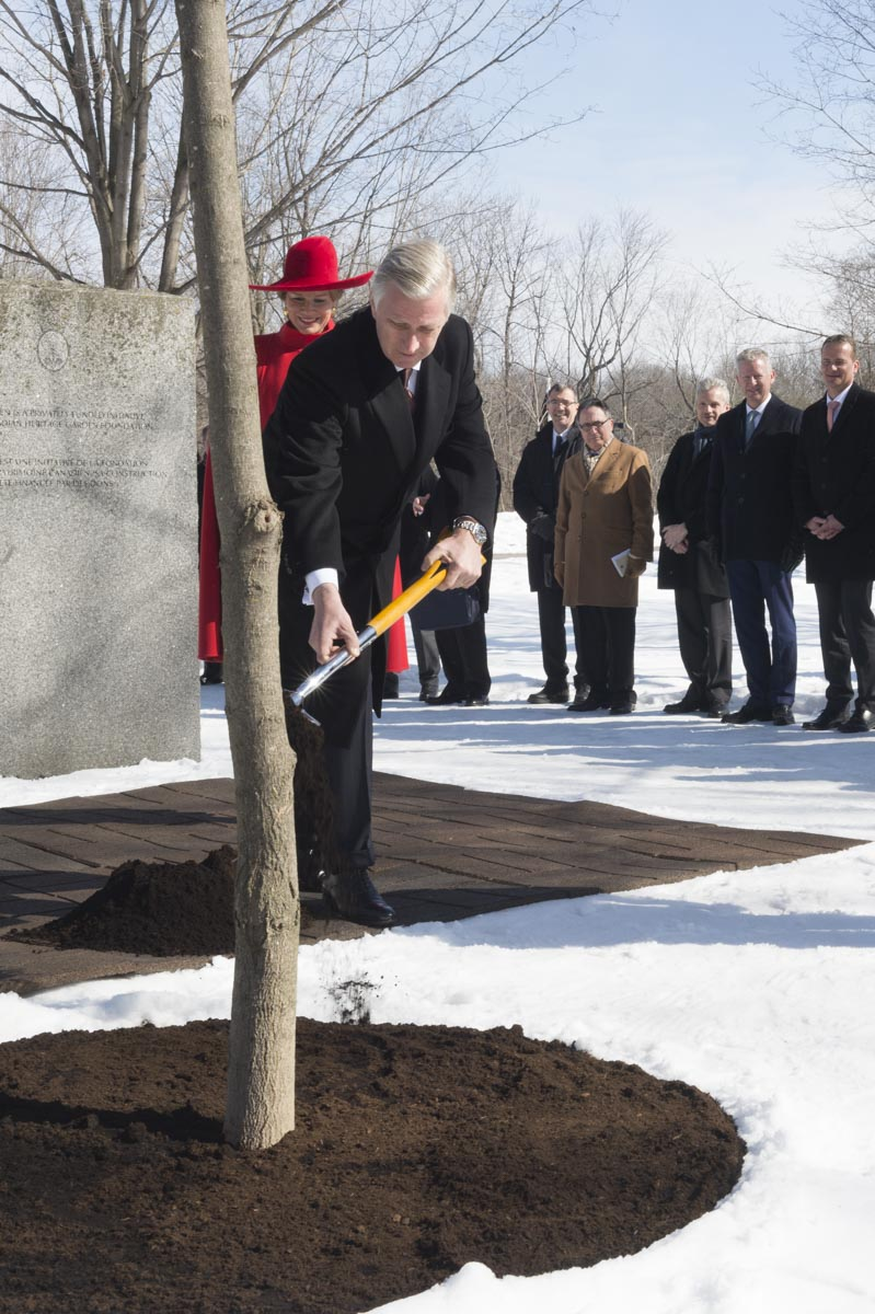 Their Majesties' morning visit to Rideau Hall ended with the planting of a sugar maple, symbolizing the friendship between our two countries and underlining the fact that the visittook taking place as spring approaches, which is when the sap, later to be transformed into maple syrup, starts to flow.