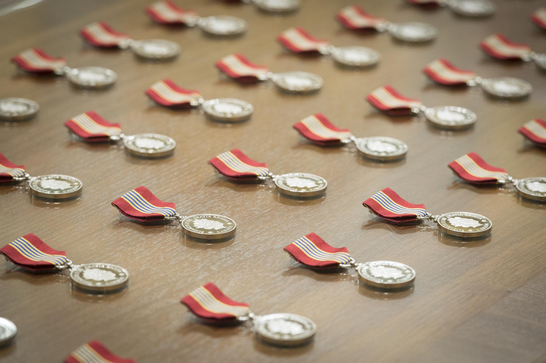 The Medal for Volunteers recognizes the exceptional volunteer achievements of Canadians from across the country in a wide range of fields.