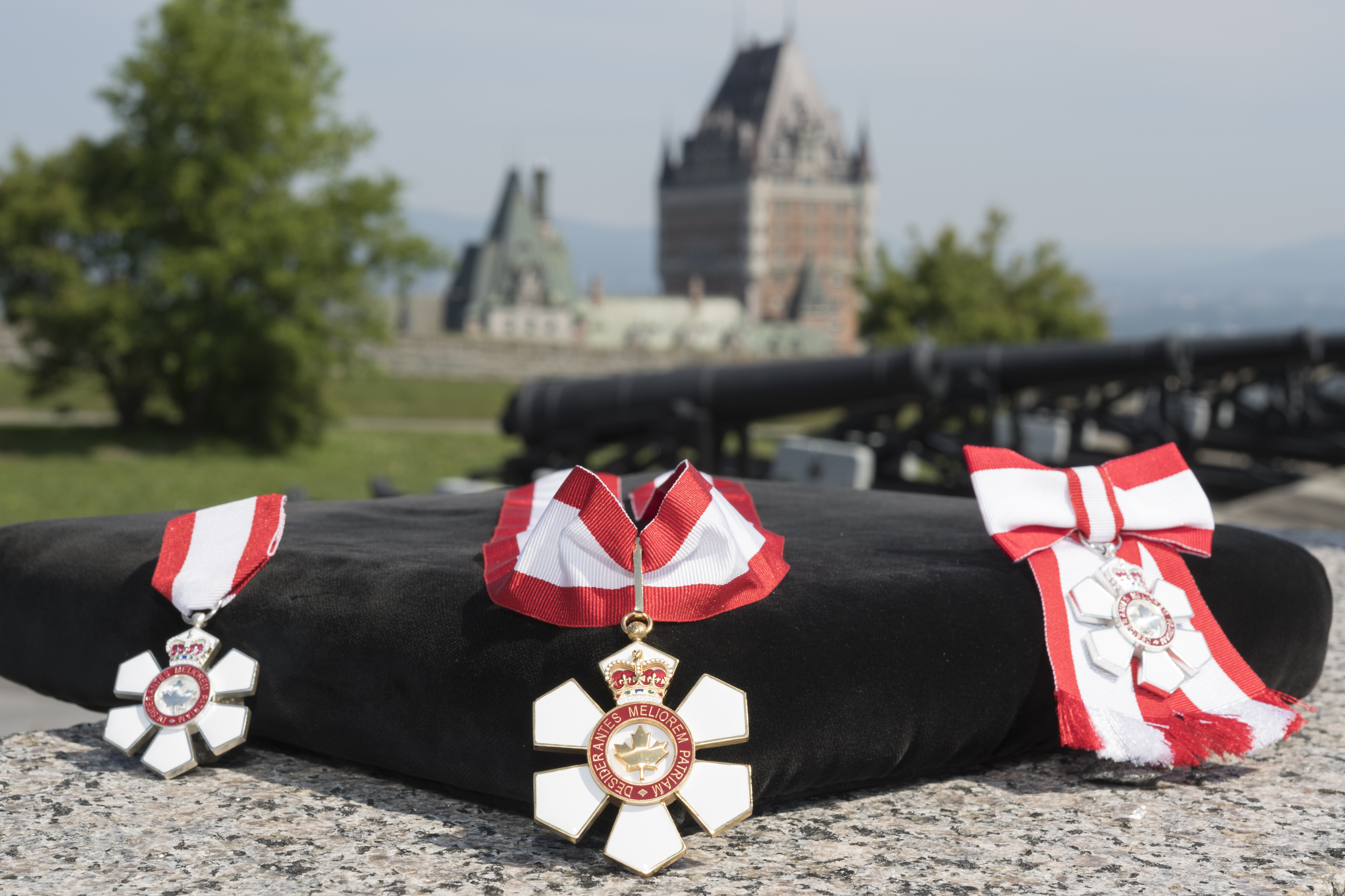 "Created in 1967, the Order of Canada, one of our country's highest civilian honours, recognizes outstanding achievement, dedication to the community and service to the nation. Close to 7 000 people from all sectors of society have been invested into the Order. Their contributions are varied, yet they have all enriched the lives of others and have taken to heart the motto of the Order: DESIDERANTES MELIOREM PATRIAM (""They desire a better country"")."