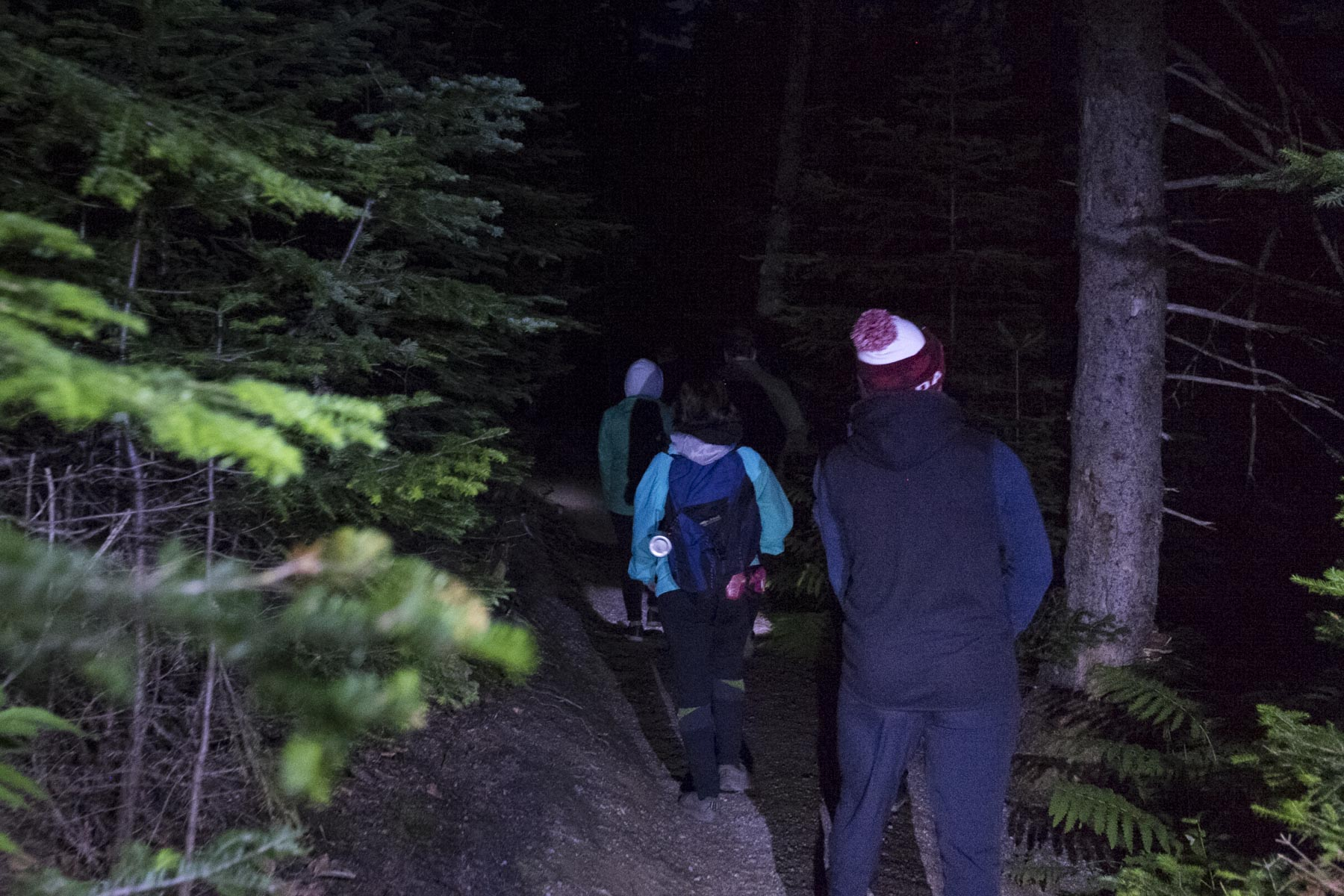 Flashlight in hand, Her Excellency joined local residents and tourists on the hike.
