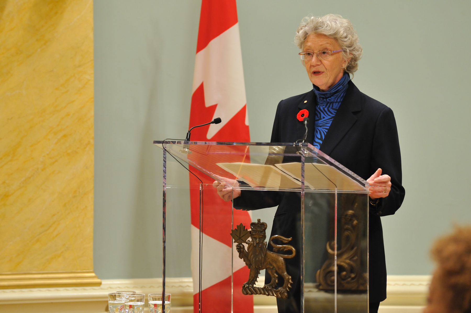 Ms. Gisèle Jacob, President of the Royal Canadian Geographical Society, said on few words on the laureate during the ceremony. Mr. Church is a fluvial geomorphologist, a specialist in how rivers and streams shape the landscape.