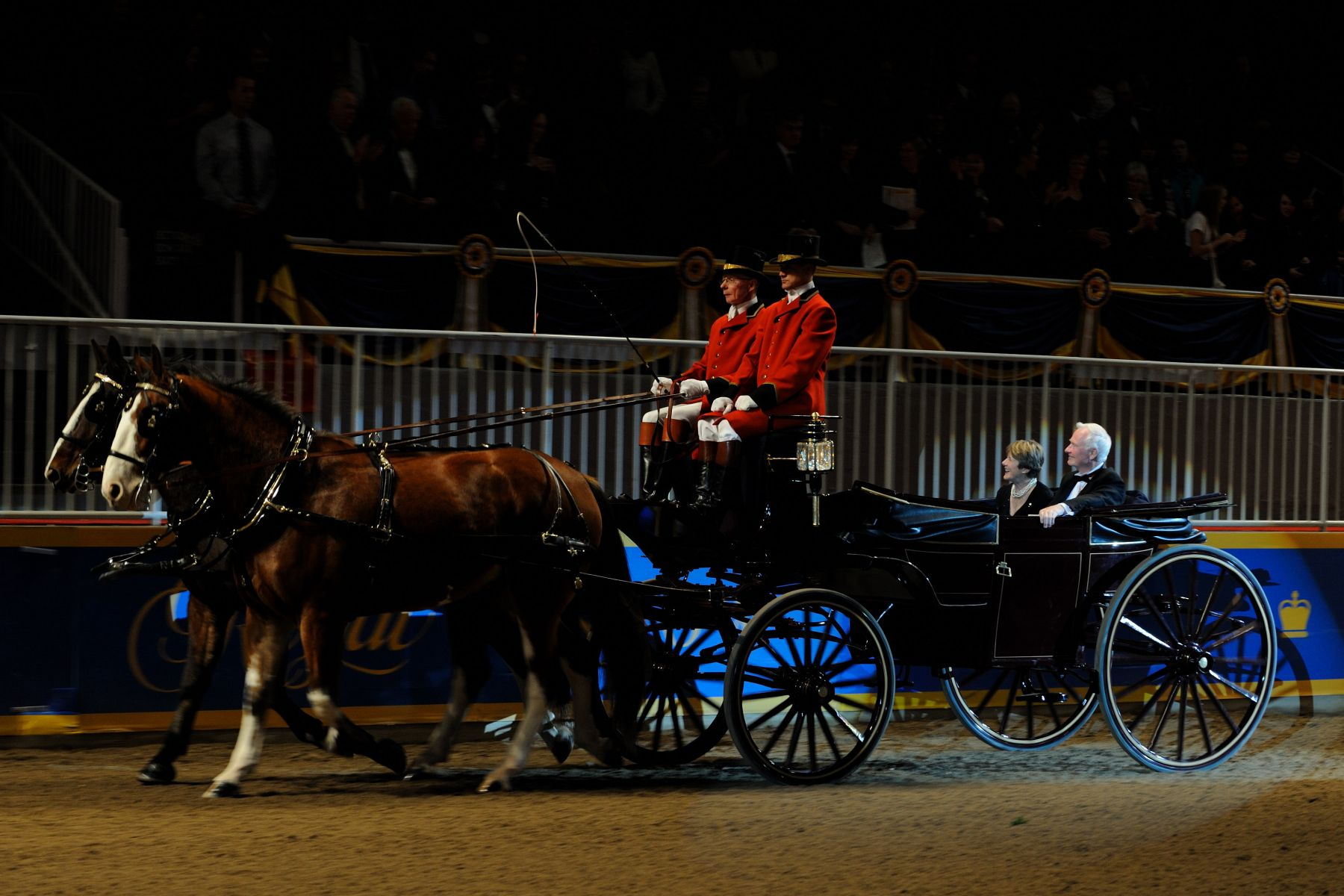 Their Excellencies also attended the Royal Horse Show and arrived by landau.