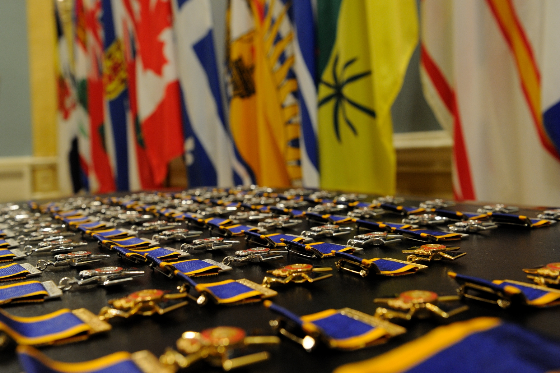His Excellency the Right Honourable David Johnston, Governor General and Commander-in-Chief of Canada, presided over an Order of Military Merit investiture ceremony at Rideau Hall, on February 18, 2011. The Governor General bestowed the honour on three Commanders, eight Officers and 45 Members.