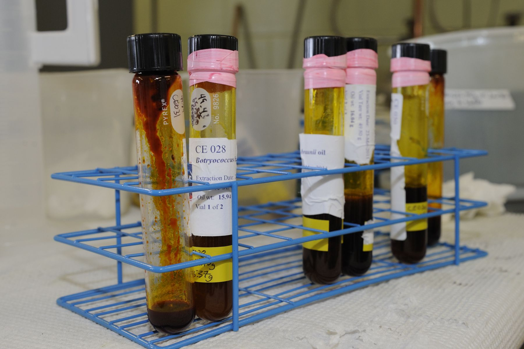 At the station, NRC researchers and its partners are developing technologies in areas of algae cultivation, oil extraction and ultimately, biofuel production. The collaborators are also investigating innovative ways to use the by-products of fuel production, such as in health-related products and animal feed.