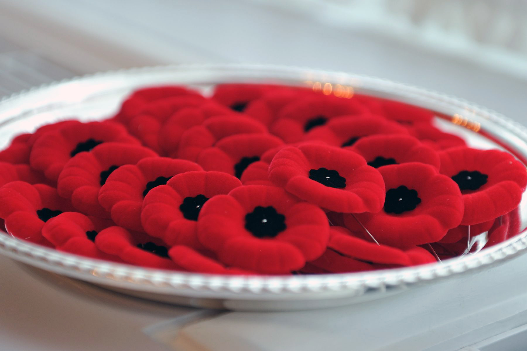 Poppies will be available to the general public beginning October 28, 2011.