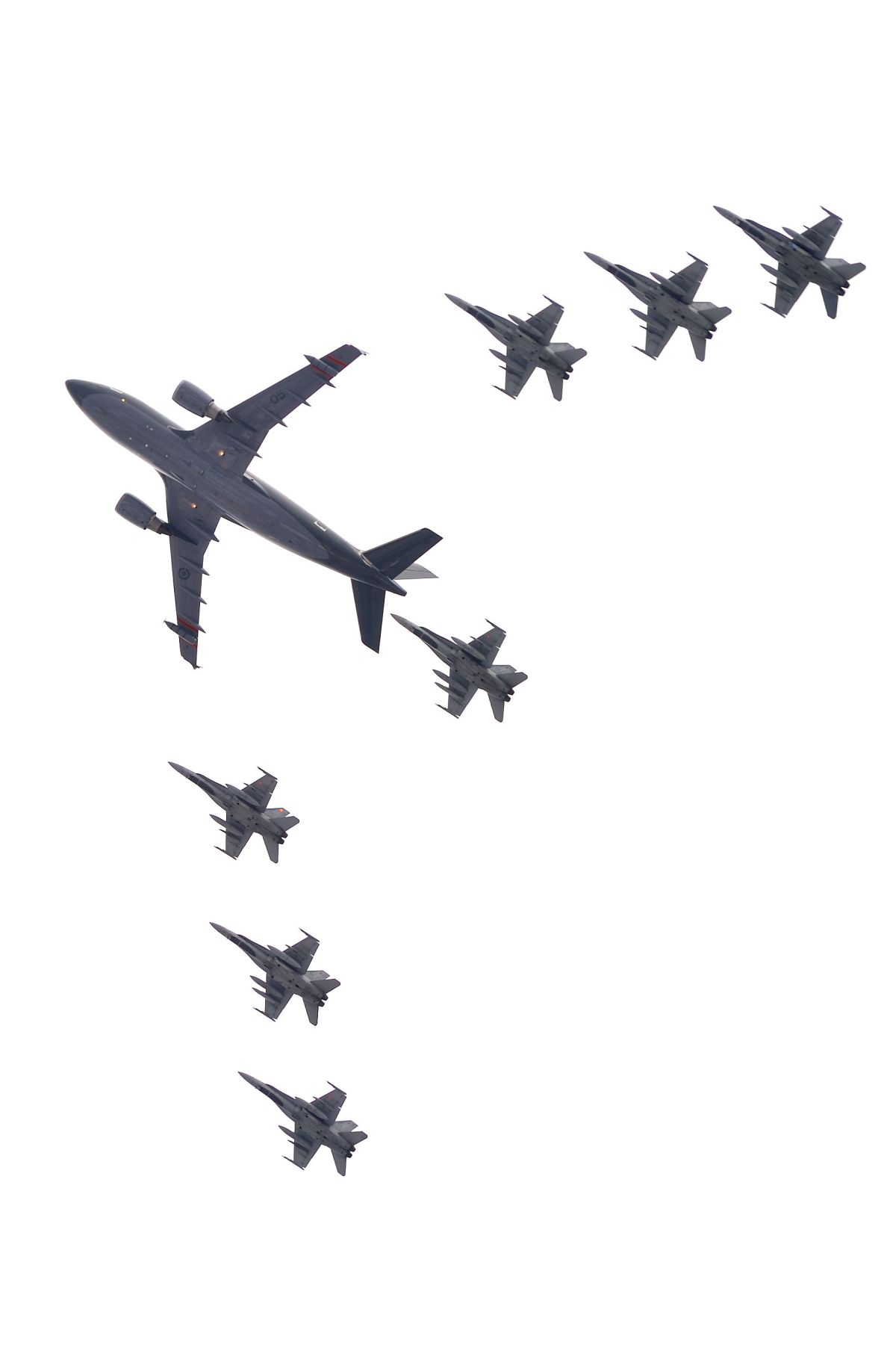 A flypast flew over Parliament Hill.