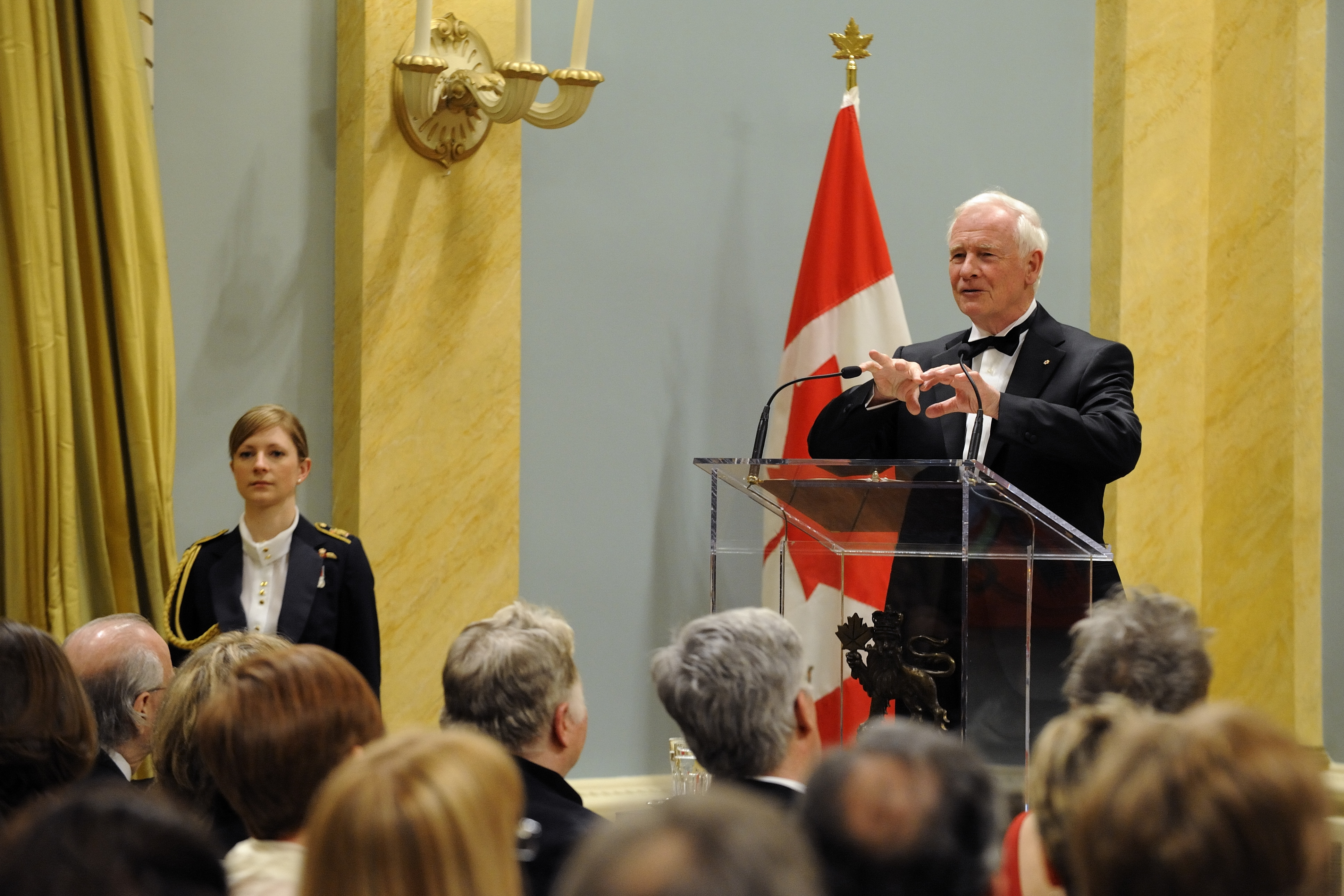 The Governor General's Awards in Visual and Media Arts are Canada's foremost awards for excellence in these artistic disciplines. The prizes are awarded annually to visual and media artists for distinguished career achievement in visual arts, architecture, independent film and video, or audio and new media. His Excellency the Right Honourable David Johnston, Governor General of Canada, delivered a speech on this occasion.