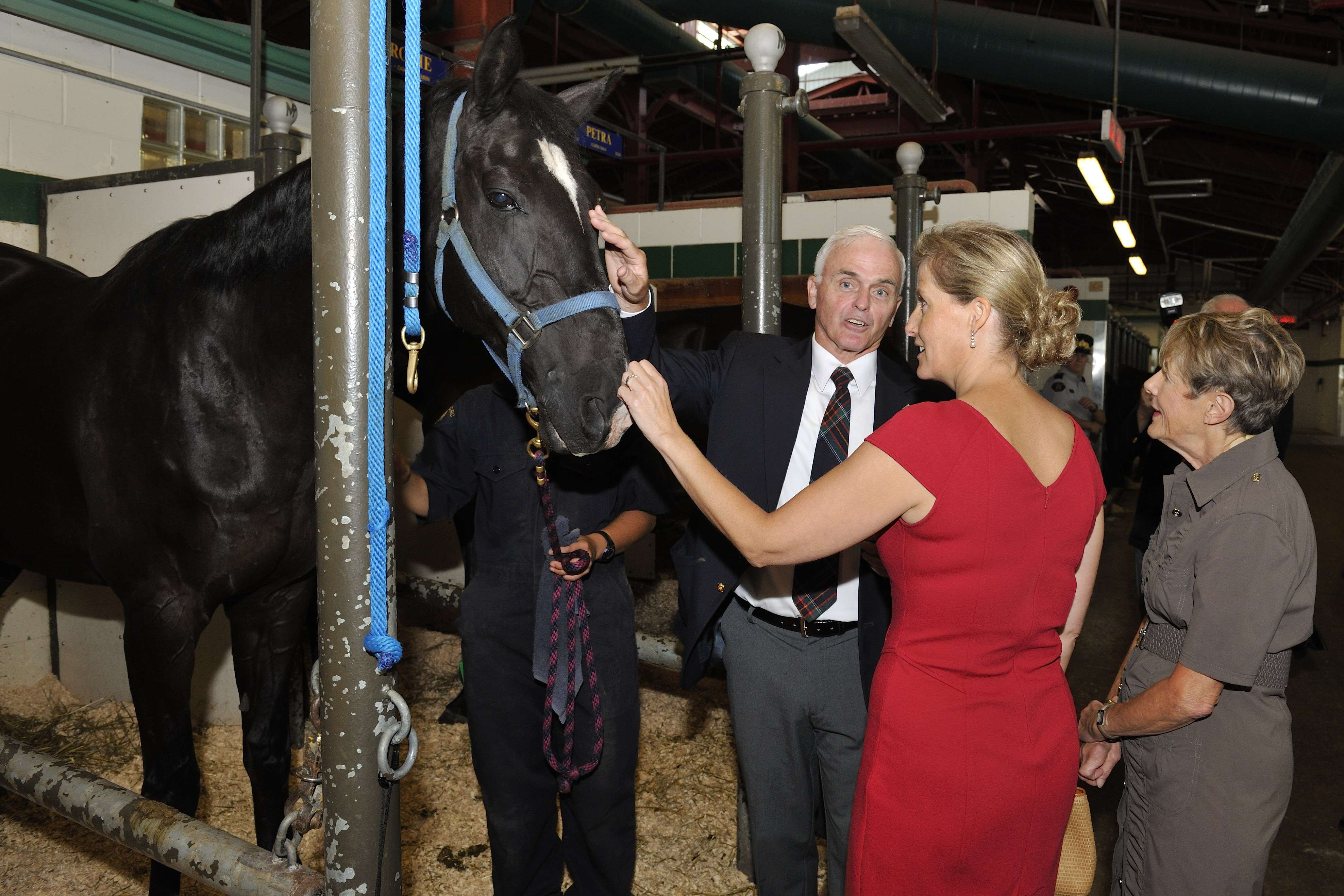 "The tour conclude with a visit to the stables. Since 1988, the Canadian Sunset Ceremonies are an annual event, offering the RCMP a way of thanking the community for its support, as well as means of providing the public with an opportunity to see the Musical Ride. The 2012 theme is ""The Queen's Diamond Jubilee - A Canadian Celebration."""