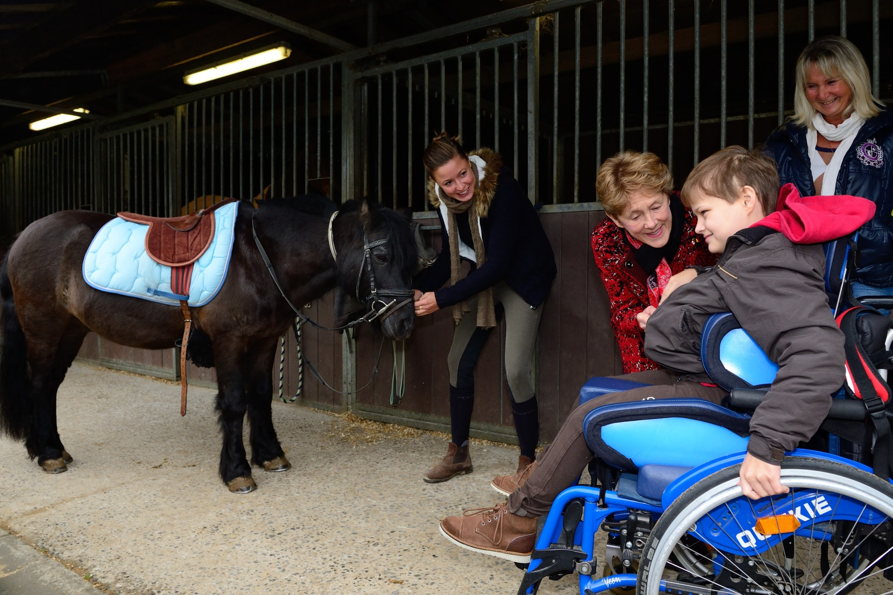 On October 29, 2014, Her Excellency visited Pony Paradise, a hippotherapy centre based in Brussels.