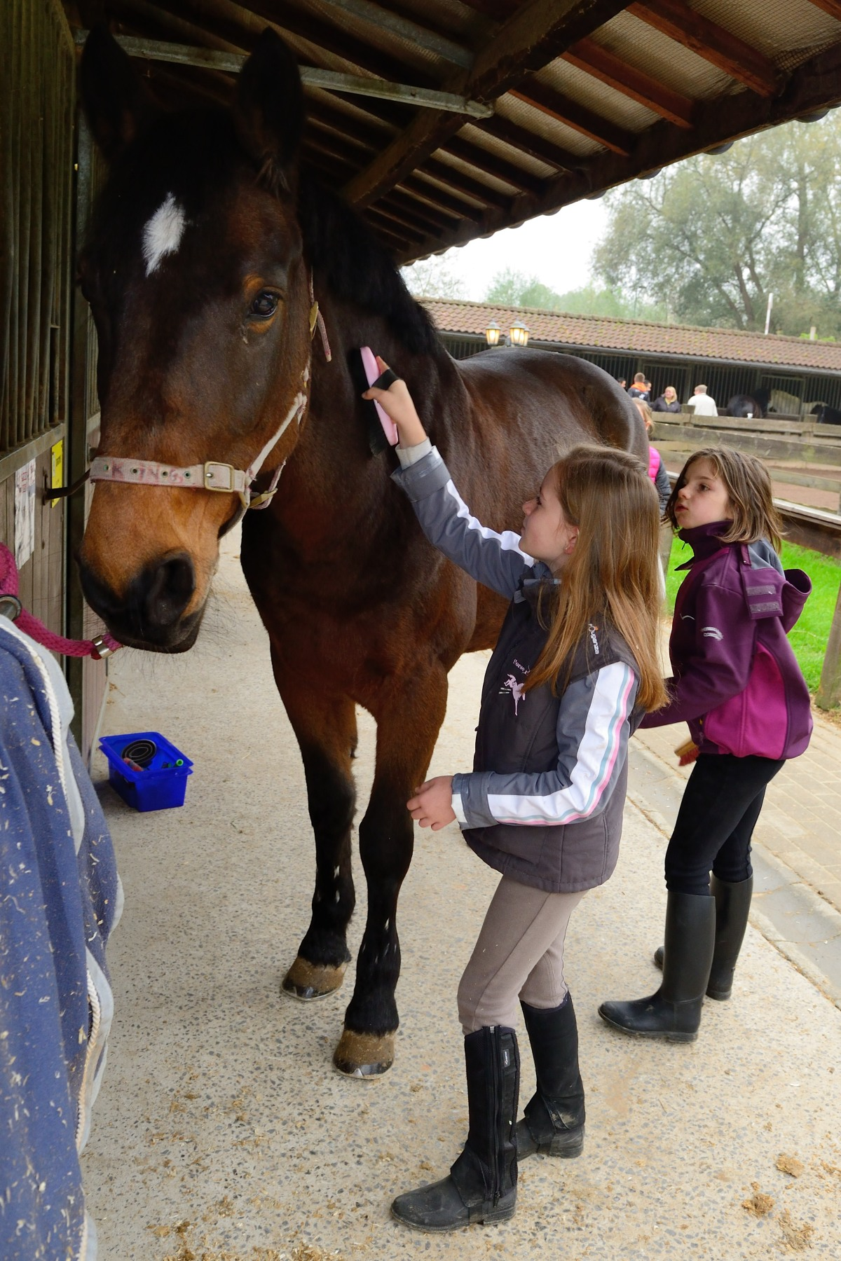 Hippotherapy is a therapeutic approach used to treat individuals experiencing difficulties related to physical or mental disabilities, as well as people suffering from depression, personality disorders, ADHD and autism.