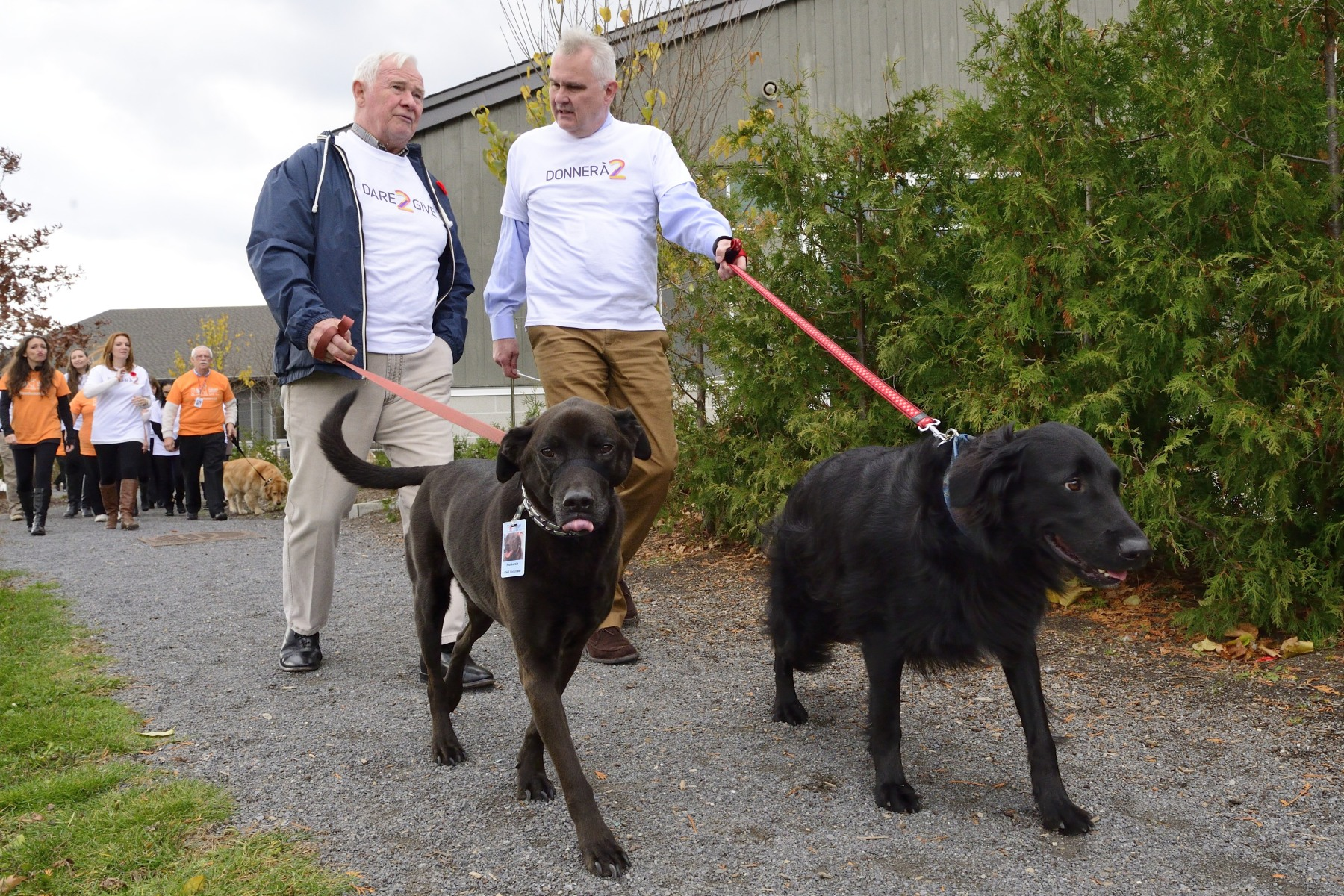 Together, the group participated in the shelter's volunteer Dog Walking Program.