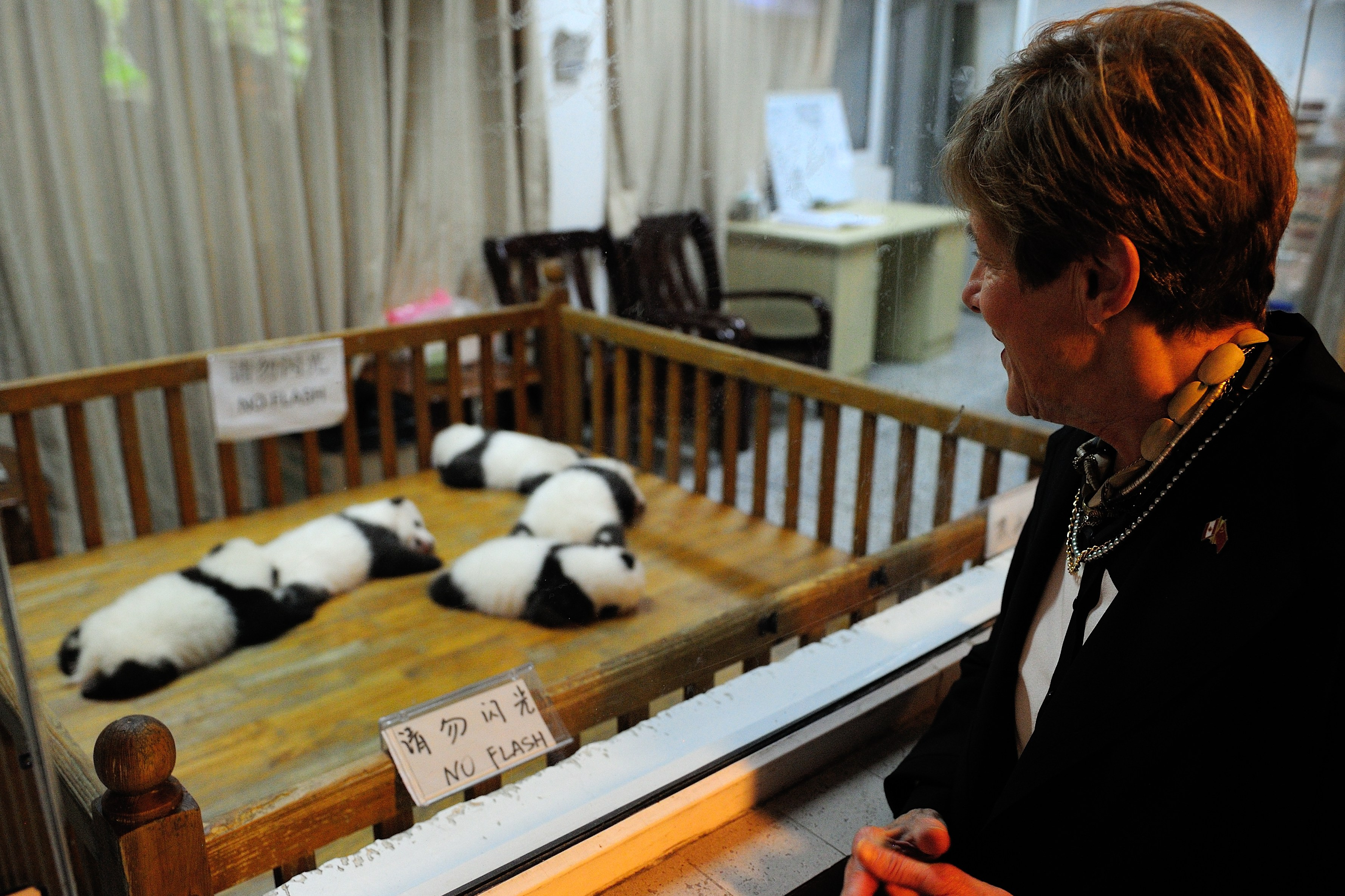 Her Excellency also had the opportunity to visit the centre's nursery and see the panda enclosures.