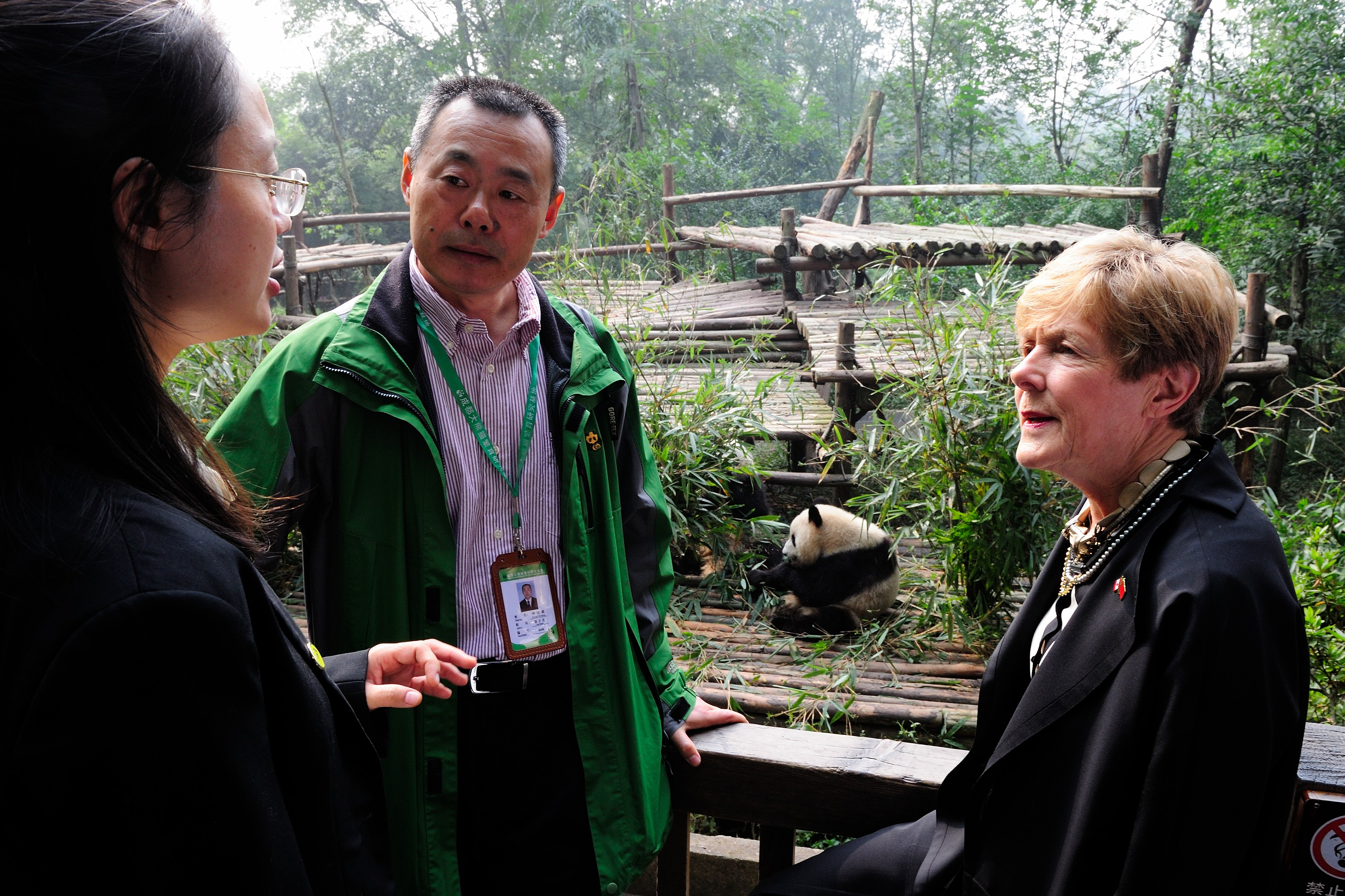 "The Chengdu Research Base of Giant Panda Breeding (""Chengdu Panda Base"") is a non-profit organization engaged in wildlife research, captive breeding, conservation education and educational tourism."