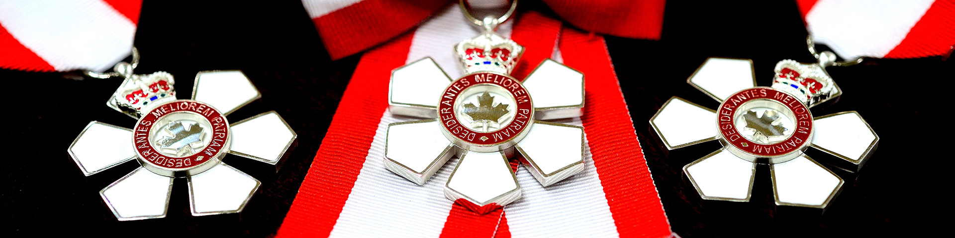order of canada the governor general of canada