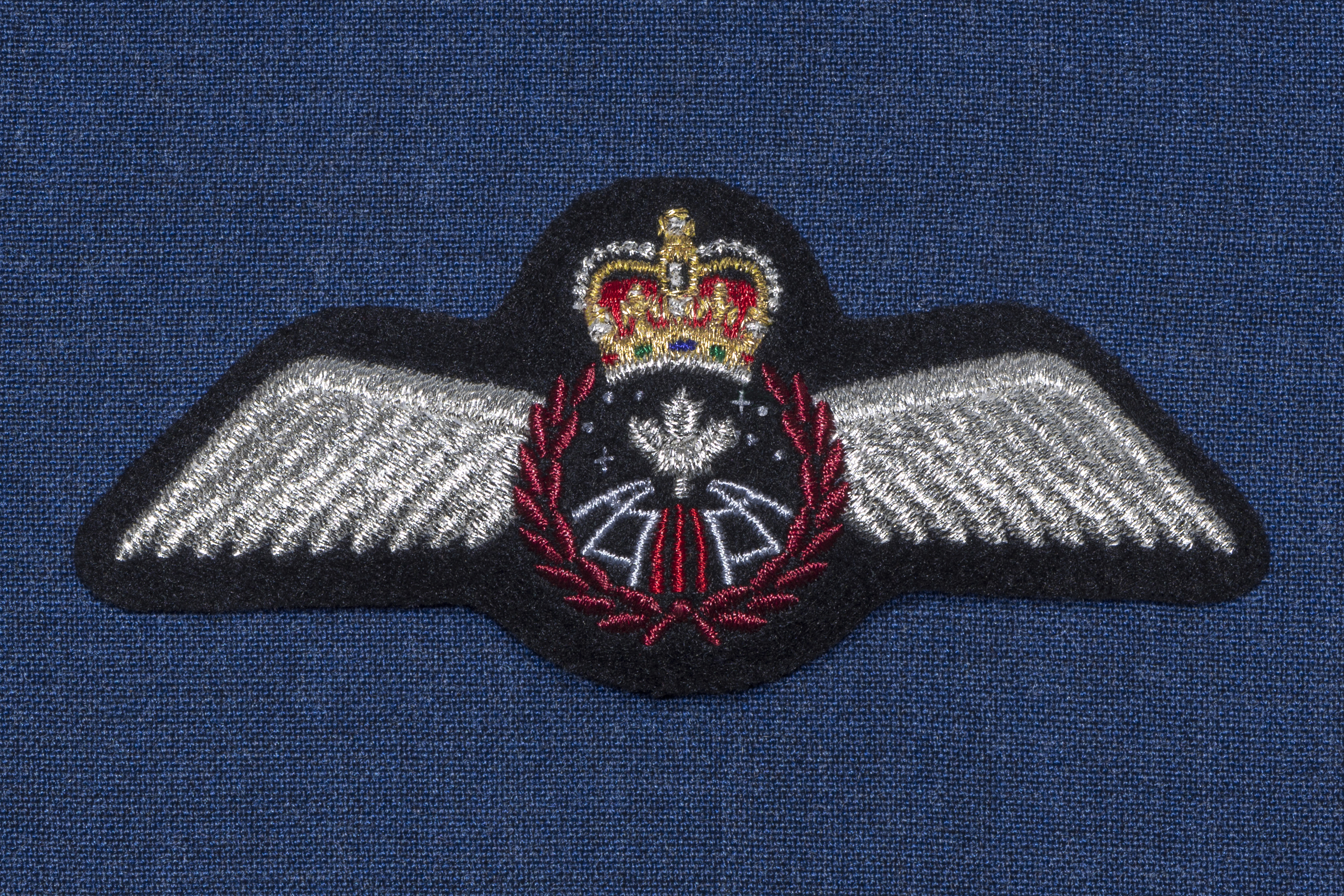 The Royal Canadian Air Force's astronaut wings