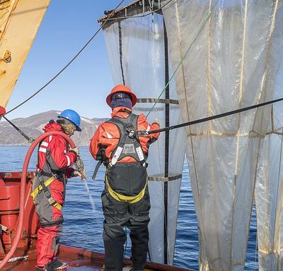 Son Excellence a aidé l'équipe de scientifiques à nettoyer les filets utilisés pour recueillir des échantillons.