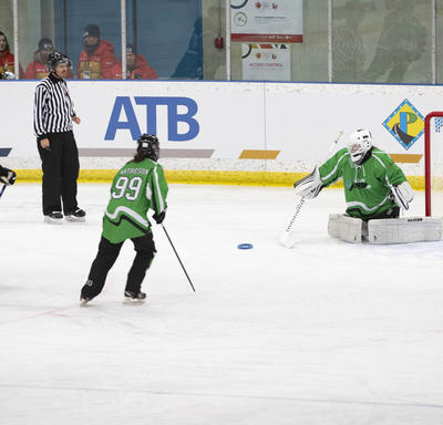 Hockey players in blue and green jerseys.