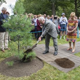 Plantation d'un arbre commémoratif