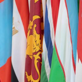 Les drapeaux de la Mongolie, de l'Égypte, du Sri Lanka, de la Gambie et de l'Ouzbékistan sont côte à côte.
