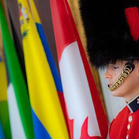 Un membre du Governor General's Foot Guards se tient devant les drapeaux.