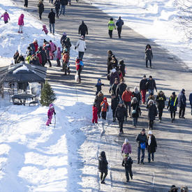 A crowd of people dressed in winter gear walk along the main path of Rideau Hall.