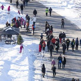 Une foule de personnes vêtues de vêtements d'hiver parcourent le sentier principal de Rideau Hall.