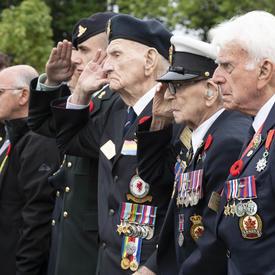 Des hommes âgés, y compris des anciens combattants, se tiennent debout l'un derrière l'autre. Les anciens combattants saluent. Le général Julie Payette dépose une couronne au pied d'un monument blanc.