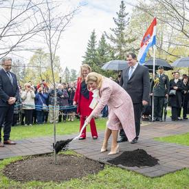 La présidente dépose de la terre sur le charme de Caroline bleu planté pour marquer sa visite d'État.