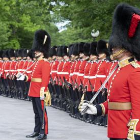 Les gardes de cérémonie se tiennent au garde-à-vous en ligne droite, prêts pour l'inspection.