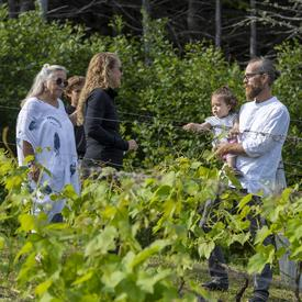 The Governor General speaks with Larence-Olivier Brassard between two vines at the Domaine des Salanges winery.