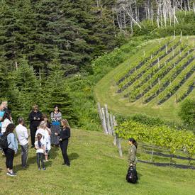 La gouverneure générale s'adressant à un petit groupe de personnes à l'extérieur des vignobles du Domaine des Salanges, des vignes vertes en arrière-plan.