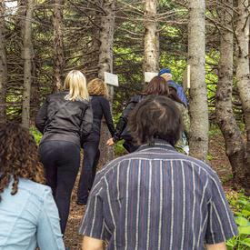 The Governor General and a small group venture into the woods to view the marked trees at the Verger.