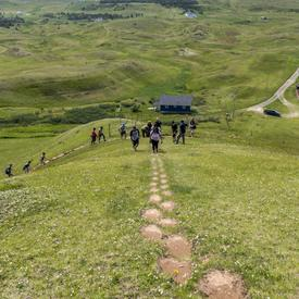 The Governor General and a small group walk to the top of Big Hill, following the rough path.
