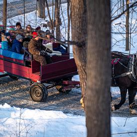Some visitors took a break and climbed aboard a horse-drawn wagon.