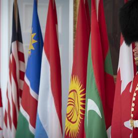 Une photo des Governor General's Foot Guards flanquant des drapeaux de pays.