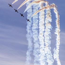 Les Snowbirds ont épaté la foule présente avec leurs manoeuvres et prouesses aériennes.